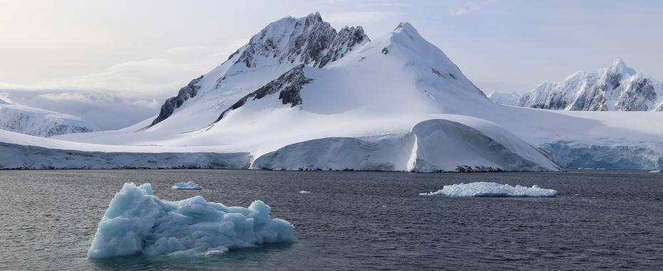 De l'Antarctique aux Shetland du Sud
